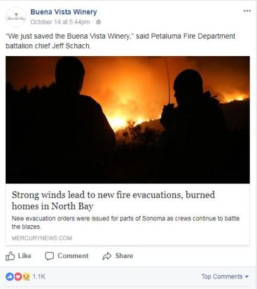 Buena Vista Fire